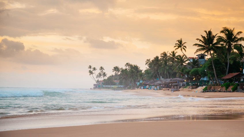 The 5 Best Beaches in Sri Lanka